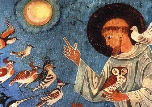 San Francesco e il creato
